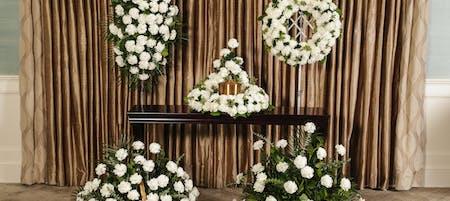 White Carnations Memorial Series