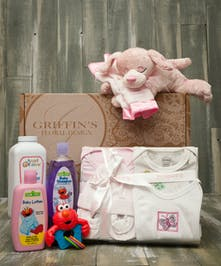 Baby Girl 5 Piece Gift Basket Set Columbus Baby Baskets