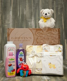 Baby 5 Piece Gift Basket Set Columbus Baby Baskets