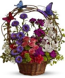 Columbus Flower Basket Butterfly & Posies