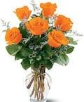 Half Dozen Orange Roses