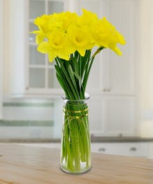 Sweet Little Vase Of Spring Daffs