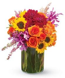 Summer Salsa Flowers -  Colubus, OH Florist