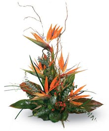 """Say """"Thank You"""" With Tropical Birds Of Paradise"""