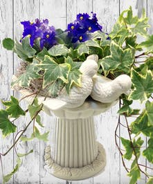 Birdbath And Violets Columbus Oh Florists Newark