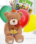 Mr Bear E. & Balloons