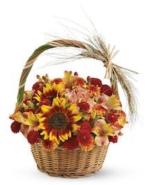 Butterscotch Harvest Basket Columbus Oh Florists Griffins