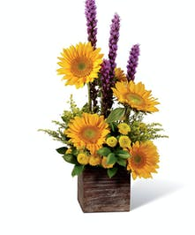 Country Chic Birthday Get Well Flowers Columbus Ohio