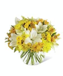 Sunshine & Wishes Birthday Get Well Flowers Columbus Ohio