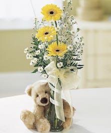 Teddy With Gerbs