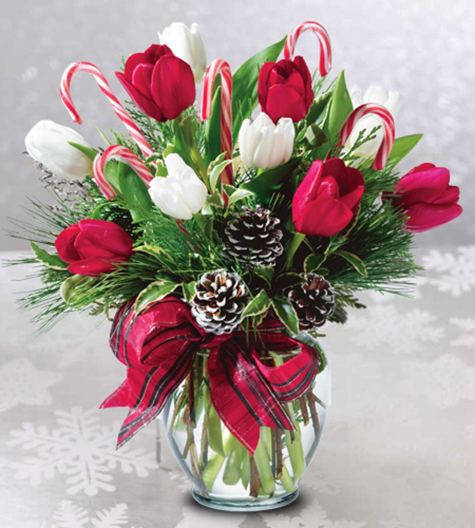 Peppermint tulips christmas flowers columbus ohio florists temporarily out of stock izmirmasajfo