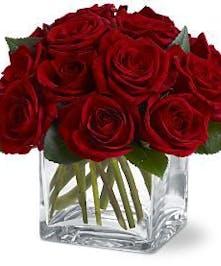 Red roses elegantly displayed.