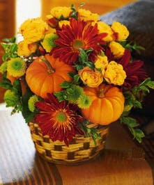Pumpkin Patch Basket Fall Flowers Columbus Florists Ohio