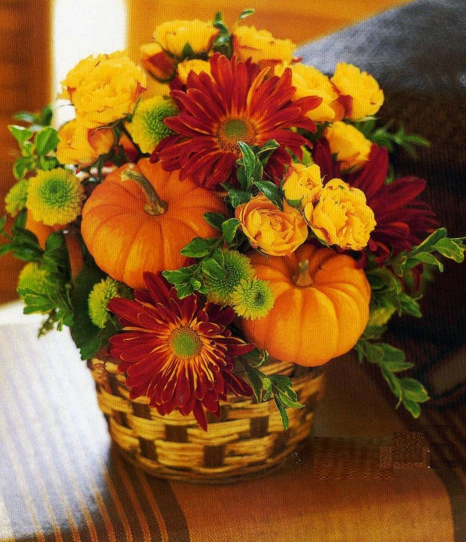 Pumpkin Patch Basket Fall Flowers Columbus Florists Ohio