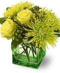 Greenlight Bouquet