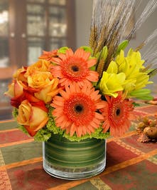 Sweet Autumn Harvest Autumn Flowers Columbus Ohio Griffins