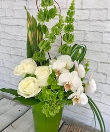 Irish Delight St Patricks Day Flower Columbus Ohio