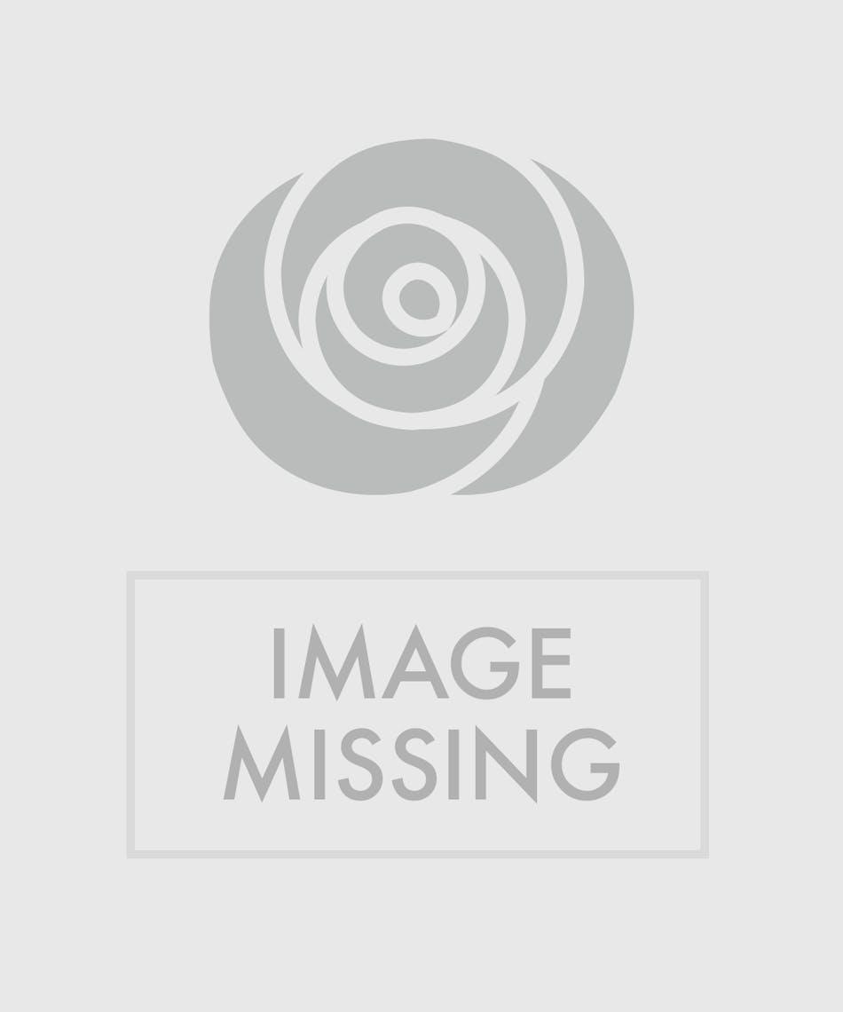 Paisley Garden Tin Columbus Oh Florists Newark Ohio Flowers