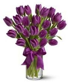 Purple Tulips Vased Columbus Oh