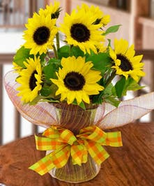 Sunflower Vase Fall Flowers Columbus Florists Griffins