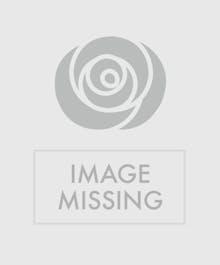 Spring's Daffodil Bowl