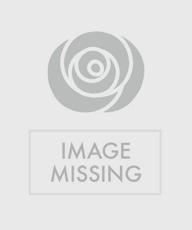 Citrus Splash Bouquet Columbus Oh Flowers Newark Ohio Florists