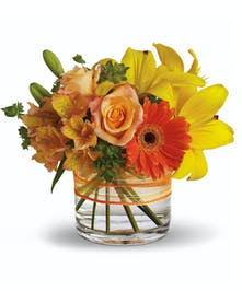 Sunny Siesta Get Well Flowers Columbus Ohio