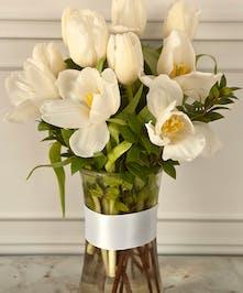 White Tulips Columbus Oh Bulb Plants Newark Ohio