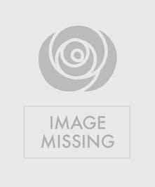 Gerberas & Daffodils