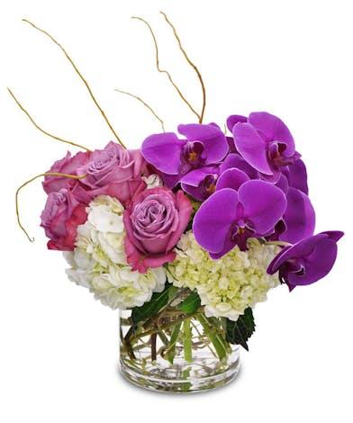 Lavender Haze Mother's Day Flowers Columbus Flower Shops Newark Ohio Flowers