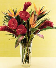 Stunning Cut Tropical Blooms Hand Designed