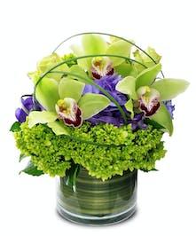 Green Rapture Birthday Flowers Columbus Ohio