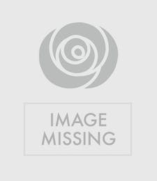 Chateau De Campuget French Wine Set